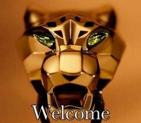 Welcome_cartier_panther_2_11.9